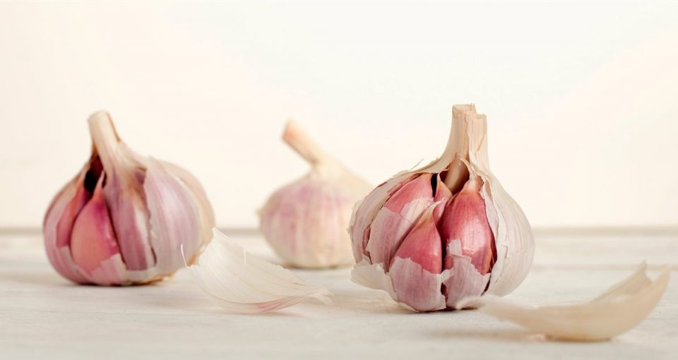 Garlic exports a golden opportunity for Zim farmers